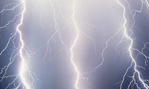 Lightning Protection Cape Coral Fl Arbor Tree Care